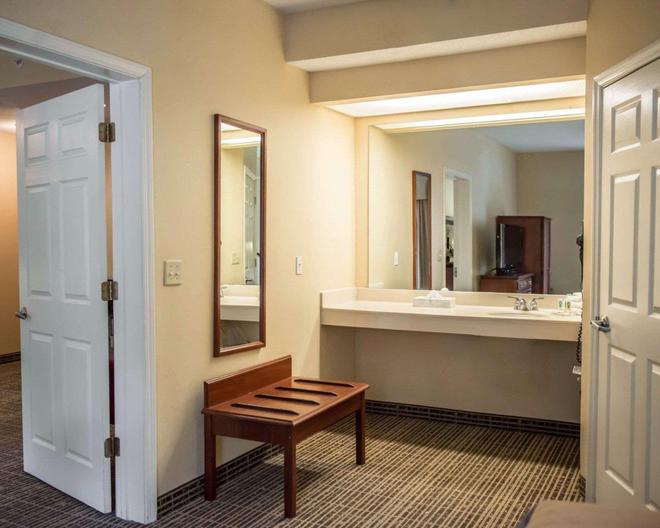 优质酒店 - 湖城 - 浴室