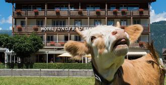 圣母峰酒店 - 因特拉肯 - 建筑