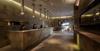 合恩角酒店 - 蓬塔阿雷纳斯 - 柜台