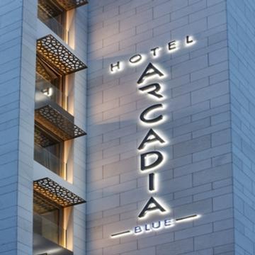 伊斯坦布尔阿卡迪亚蓝色酒店 - 伊斯坦布尔 - 建筑