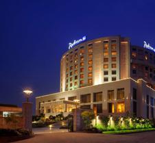 新德里德瓦卡丽笙酒店