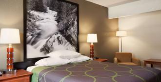 科罗拉多斯普林斯/阿法地区速8酒店 - 科罗拉多斯普林斯 - 睡房