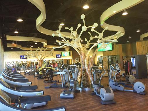 巴塞罗玛雅克鲁尼酒店 - 式服务 - 卡曼海灘 - 健身房