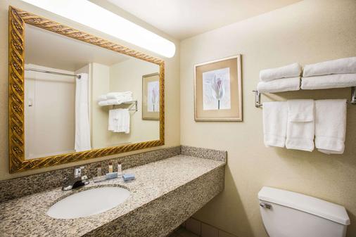 格鲁吉亚亚特兰大广场/棒球场温盖特温德姆酒店 - 亚特兰大 - 浴室