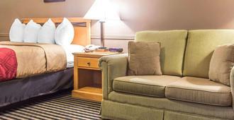 渥太华市区伊克诺酒店 - 渥太华 - 睡房
