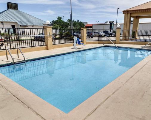 巴吞鲁日品质酒店 - 巴吞鲁日 - 游泳池