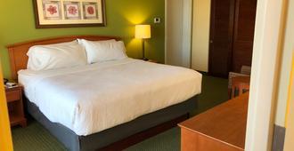 克利尔沃特海滩假日酒店&套房 - 克利尔沃特 - 睡房