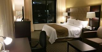 墨西哥圣达菲假日酒店 - 墨西哥城 - 睡房