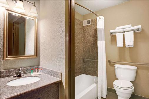 华美达休斯敦洲际机场南酒店 - 休斯顿 - 浴室