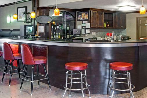 华美达休斯敦洲际机场南酒店 - 休斯顿 - 酒吧