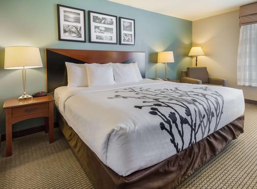 安眠套房酒店-拉皮德 - 拉皮德城 - 睡房