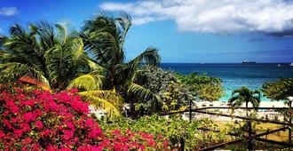 雷迪森格林纳达海滩度假胜地 - St. George's - 户外景观