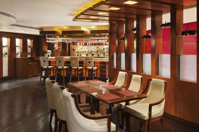 斋浦尔温德姆华美达酒店 - 斋浦尔 - 酒吧