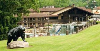 法布里基溪畔度假酒店 - 加特林堡 - 建筑