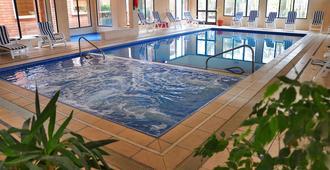 埃尔米拉多尔水疗酒店 - 科洛尼亞德爾薩克拉門托 - 游泳池