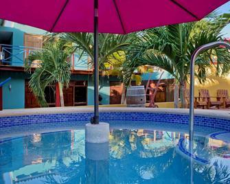 瑞思乡村酒店 - 威廉斯塔德 - 游泳池