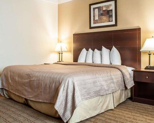 布法罗机场品质酒店 - 布法罗 - 睡房