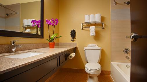 艾迪森/达拉斯贝斯特韦斯特优质酒店酒店 - 艾迪生 - 浴室