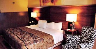 帕纳米尔卡诺酒店 - 圣地亚哥 - 睡房