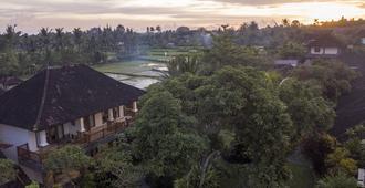 瑟瑞瑞塔小屋酒店 - 乌布 - 户外景观