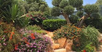 橄榄阴影民宿 - 奥斯图尼 - 户外景观