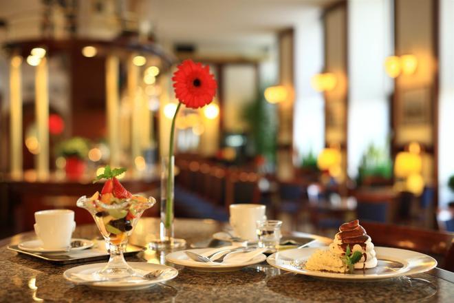布尔诺大酒店 - 布尔诺 - 酒吧