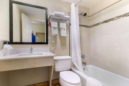 会展中心伊克诺套房酒店 - 加特林堡 - 浴室