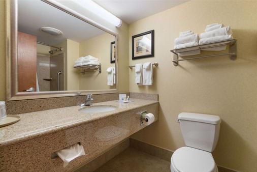 葛底斯堡战场游客中心康福套房酒店 - 盖茨堡 - 浴室