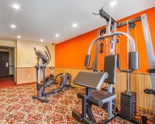 威斯康星麦迪逊东北地区罗德威套房酒店 - 麦迪逊 - 健身房
