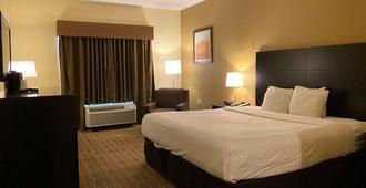 北休斯顿栢茂酒店 - 休斯顿 - 睡房