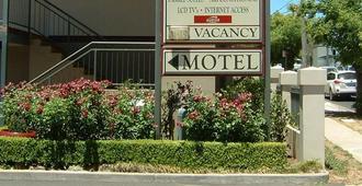 阿米代尔松树汽车旅馆 - 阿米代尔