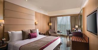 加皮西达斯酒店 - 新德里 - 睡房