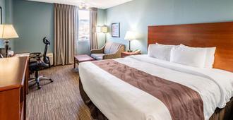 众神花园品质酒店 - 科罗拉多斯普林斯 - 睡房