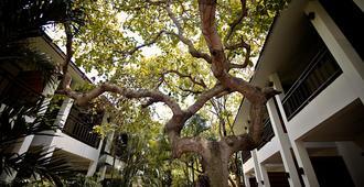 苏梅岛拉迈万塔度假酒店 - 苏梅岛 - 户外景观