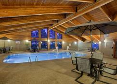 米切尔木屋及套房阿美瑞辛酒店 - 米切尔 - 游泳池