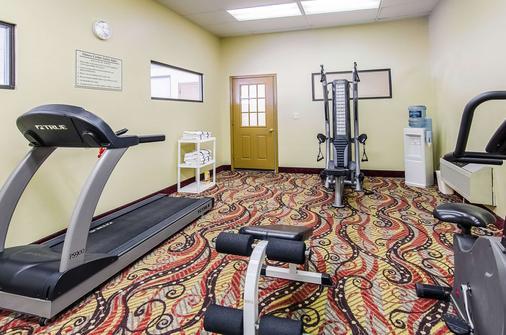 列克星敦品质酒店及套房 - Lexington - 健身房