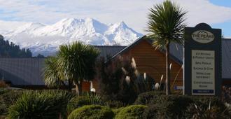 新西兰山峰汽车旅馆 - 奥阿库尼 - 户外景观