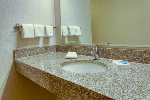 印第安纳波利斯东北德鲁套房酒店 - 印第安纳波利斯 - 浴室