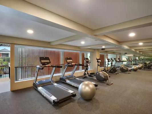 乌布皇家卡美拉酒店 - 乌布 - 健身房