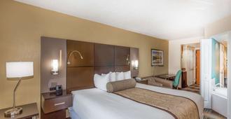 奥兰多国际机场温盖特温德姆酒店 - 奥兰多 - 睡房