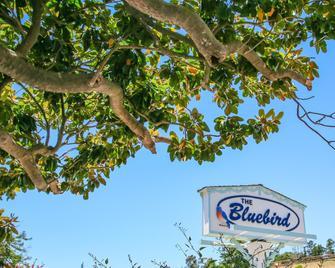 蓝鸟宾馆 - 坎布里亚 - 户外景观