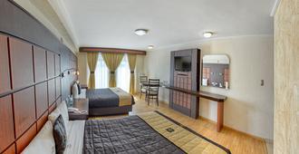 罗亚市中心酒店 - 普埃布拉 - 睡房