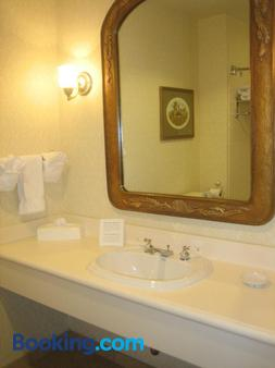 奥兰多纪念酒店 - 奥兰多 - 浴室