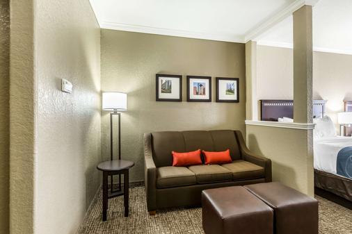 休斯顿iah机场康福特套房酒店 - 环城公路8 - 休斯顿 - 客厅