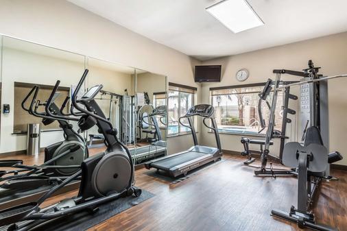 休斯顿iah机场康福特套房酒店 - 环城公路8 - 休斯顿 - 健身房