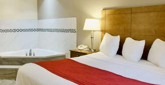 贝斯特韦斯特雷鸟汽车旅馆 - 库克维尔 - 睡房