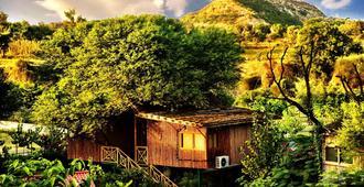 树屋度假酒店 - 斋浦尔 - 户外景观