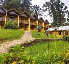 绿之梦旅馆
