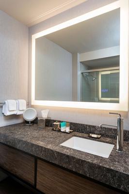 凯悦酒店-罗彻斯特 - 罗切斯特 - 浴室