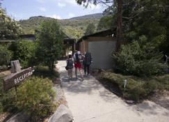 格兰坪生态国际青年旅社 - 大厅峡